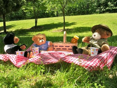 Teddy Bears Picnic at An Táin Arts Centre Dundalk