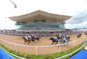 Dundalk 26-8-07. A sold out crowd of 7,000 people witness the opening day of Irelands 1st All weather Track. Photo HEALY RACING.