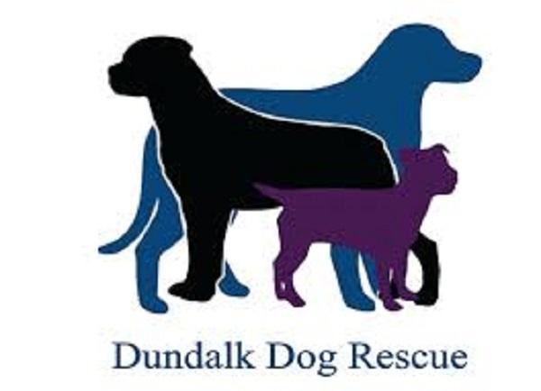 Dundalk Dog rescue