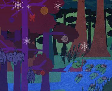 A Winter Wish ~ An Táin Arts Centre Thurs 22nd Nov