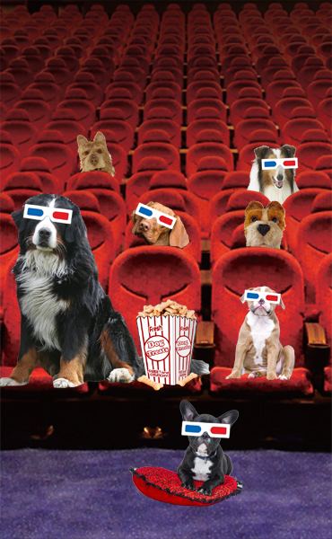 Bring your dog to the movies: Isle of Dogs ~ An Táin Arts Centre Sun 23rd Sept
