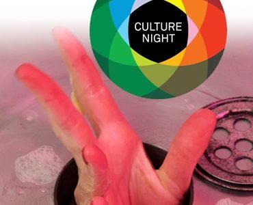 Culture Night Snapshot Installation ~ An Táin Arts Centre Dundalk