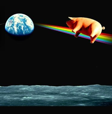 Music | Beyond the Horizon: The Pink Floyd Show ~ An Táin Arts Centre Dundalk